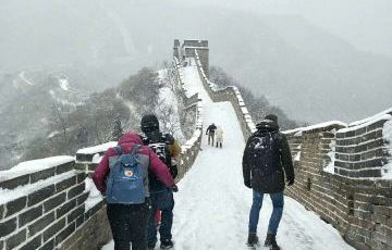 Mutianyu Great Wall Group Day Tour (No Shopping)